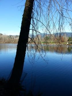 Lafarge Lake, Coquitlam