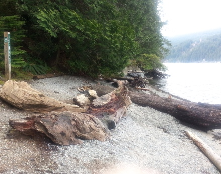 Jug Island Trail beach, Belcarra Regional Park, B.C.