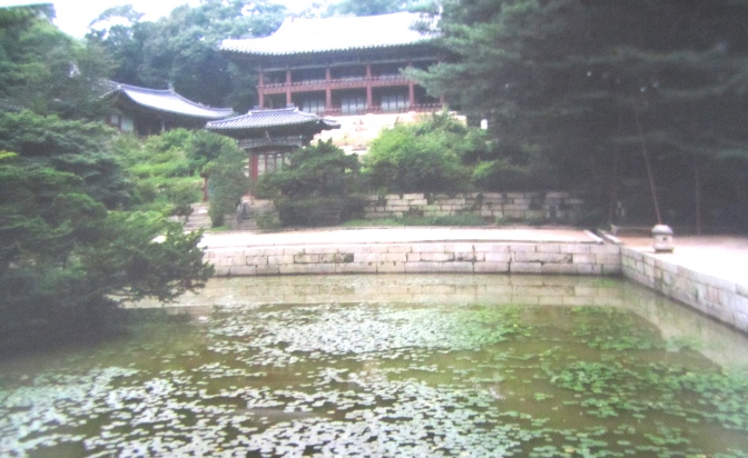 The last palace – Changdeokgung Palace