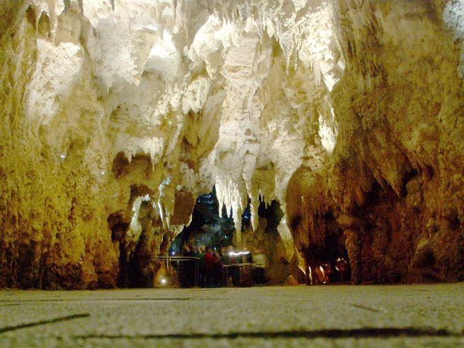 The glowworms of Waitomo Caves