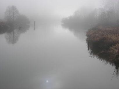 Lover Coquitlam River in winter, Colony Farm