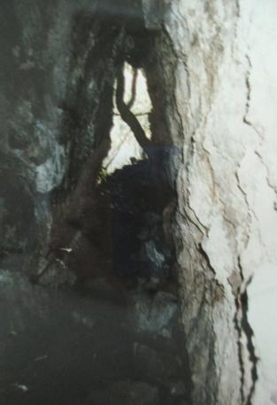 Lava cave, Rangtoto Island Reserve
