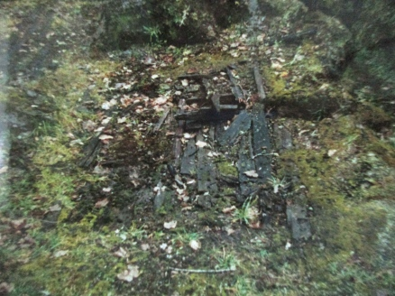 All that remains of Rotomanana Hotel, Buried Village, Rotorua