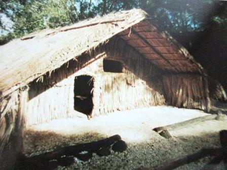 Chief's house, Rewa Village, Keri Keri
