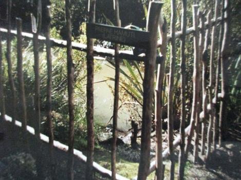 The toilet, Rewa Village, Keri Keri
