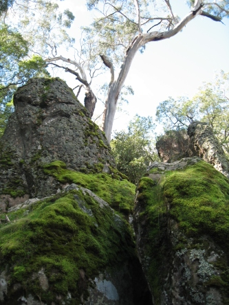 Mossy Hanging Rock