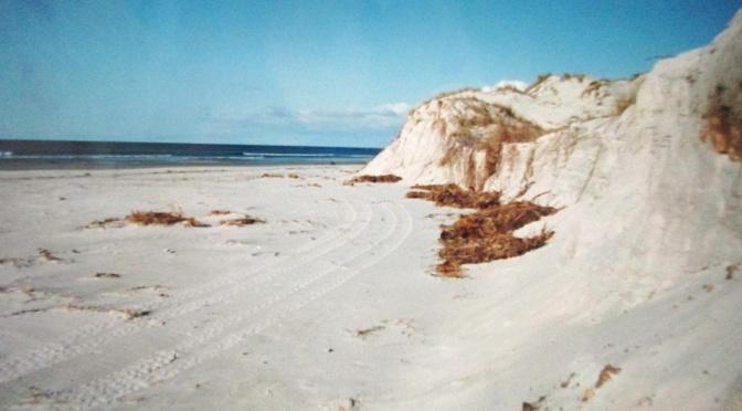 Last New Zealand Beach