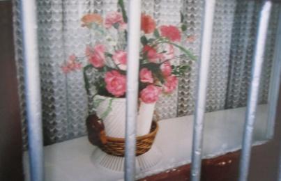Plastic flowers in a Cork window
