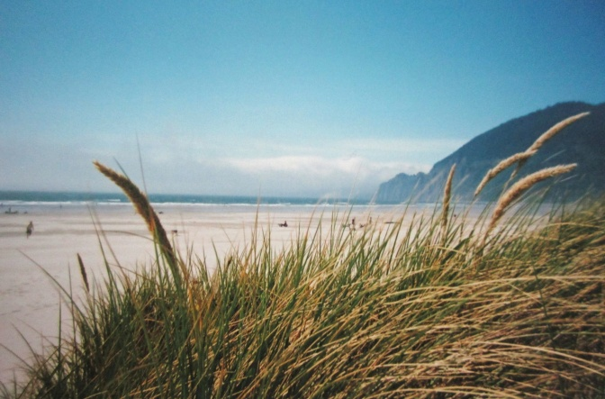 Oregon's beaches