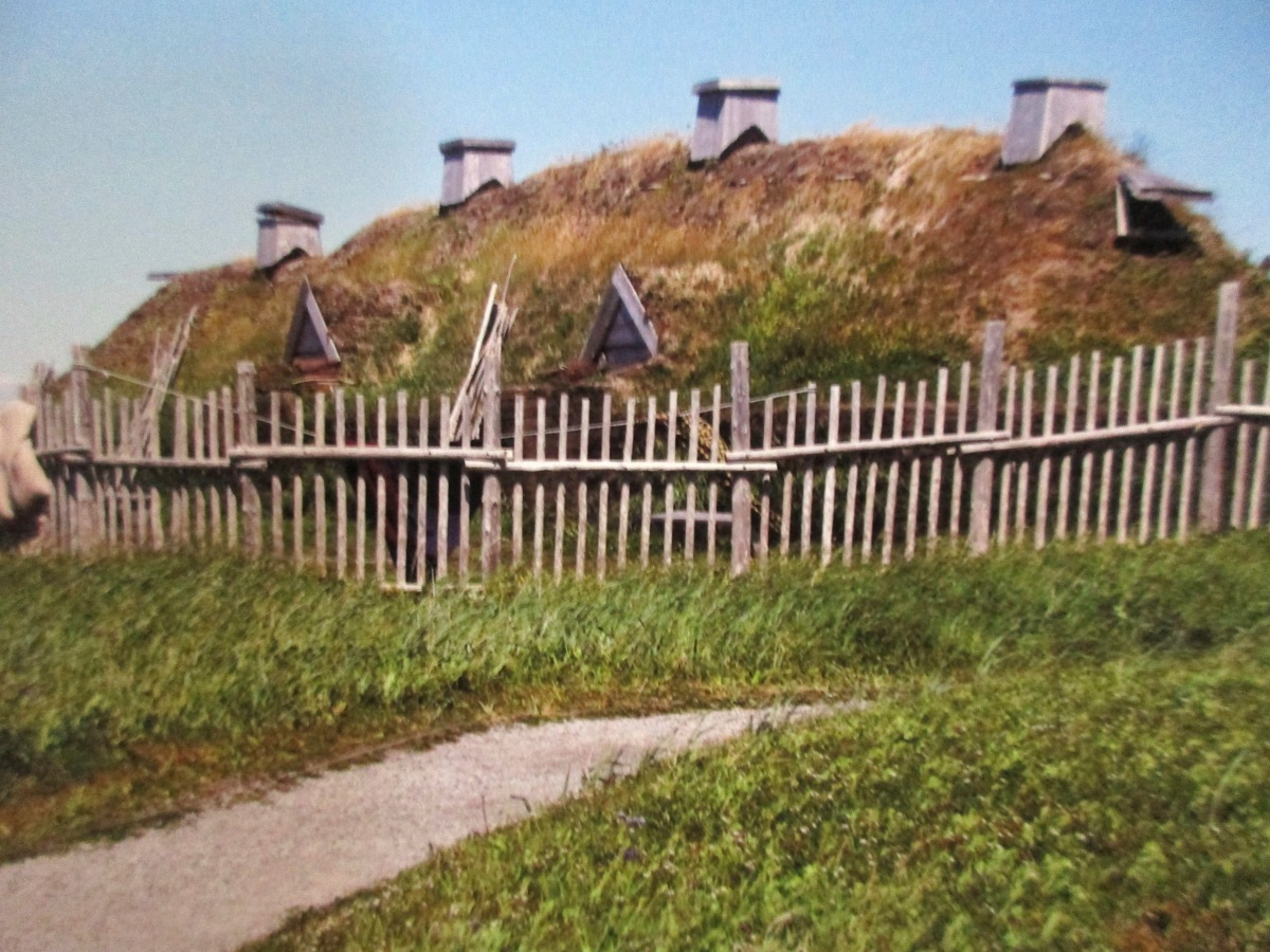 The Vikings of L'Anxe aux Meadows