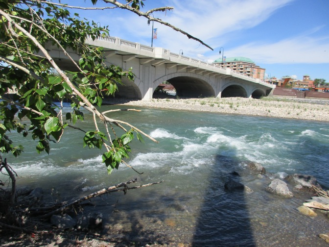 The Summer Bow River