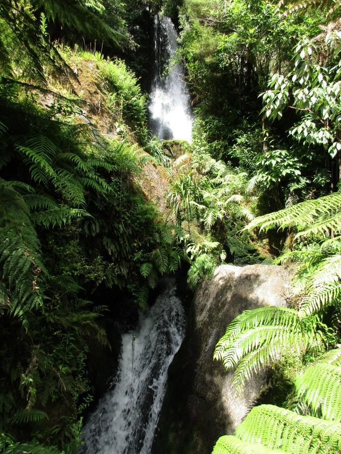 Te Wairoa Falls Trail