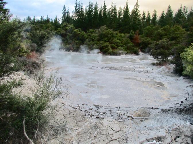 Waiotapu Scenic Reserve