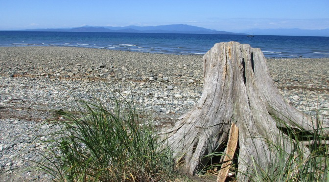 Rathtrevor Beach Provincial Park hiking trail