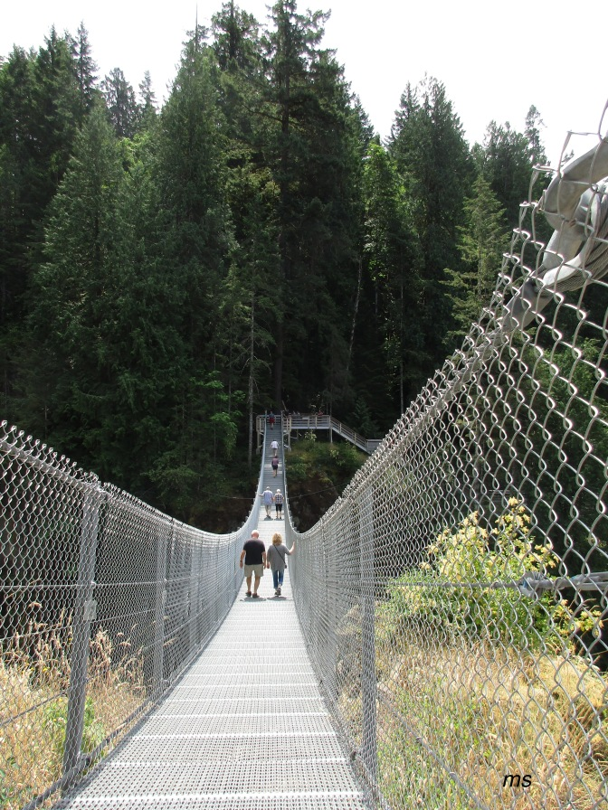 A suspension bridge?