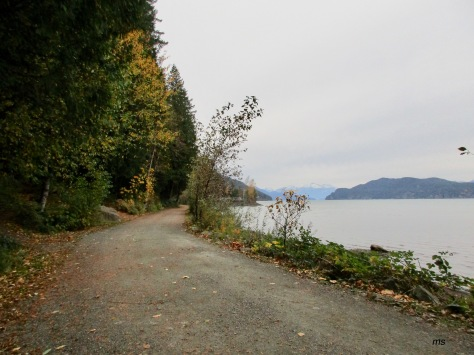 Harrison Hot Springs trail to the source