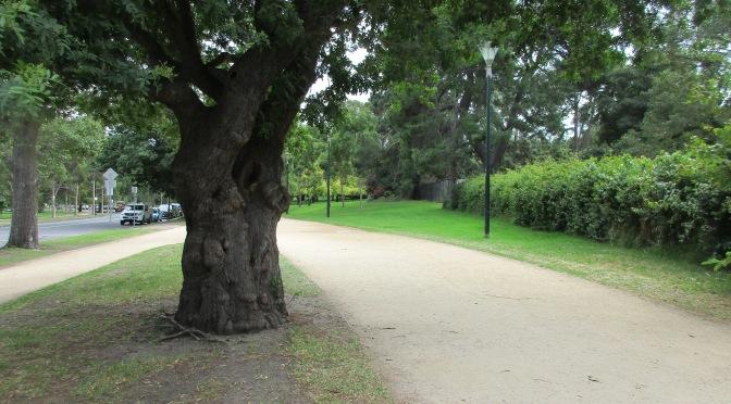 Melbourne's Tan