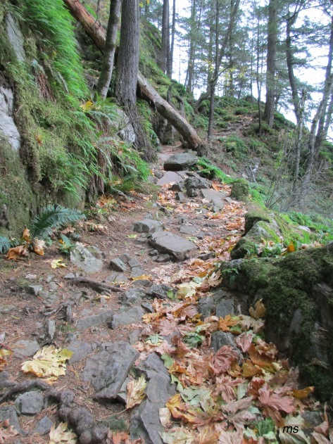 Sandy Cove Trail, Harrison Hot Springs