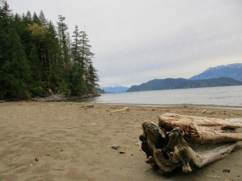 Sandy Cove Trail, Harrison Hot Springs