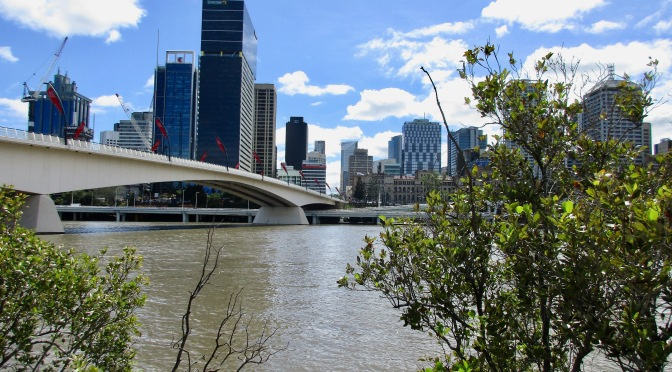 By the Brisbane River