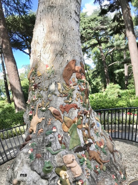 The fairy tree, Fitzroy Gardens