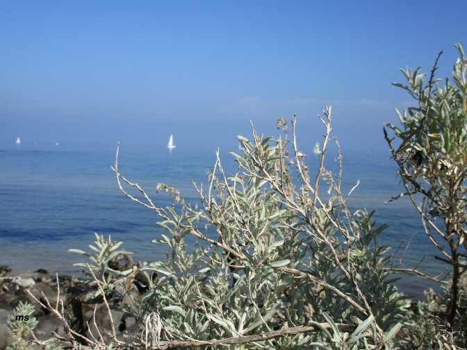 A hike to Point Ormond Hill