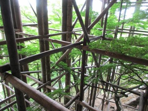 Bambo scaffolding around Kiyomizu-dera, Kyoto