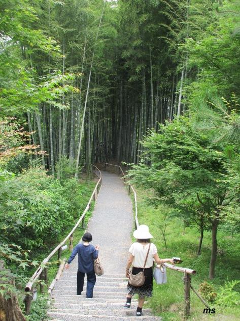 Kodai-ji Zen Temple grounds