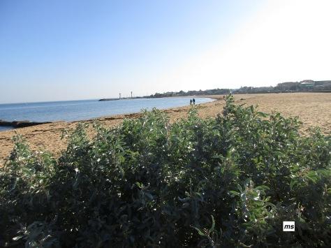 Williamstown Beach