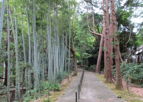 Path to Mausoleum of Emperor Hanazono