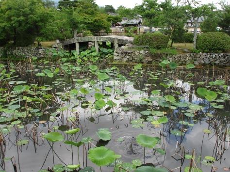 Near Arashiyama Park, Kyoto