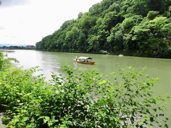 By the Katsura River