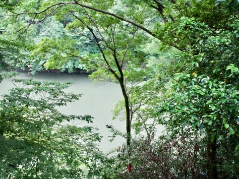 Katsura River from Arashiyama Park