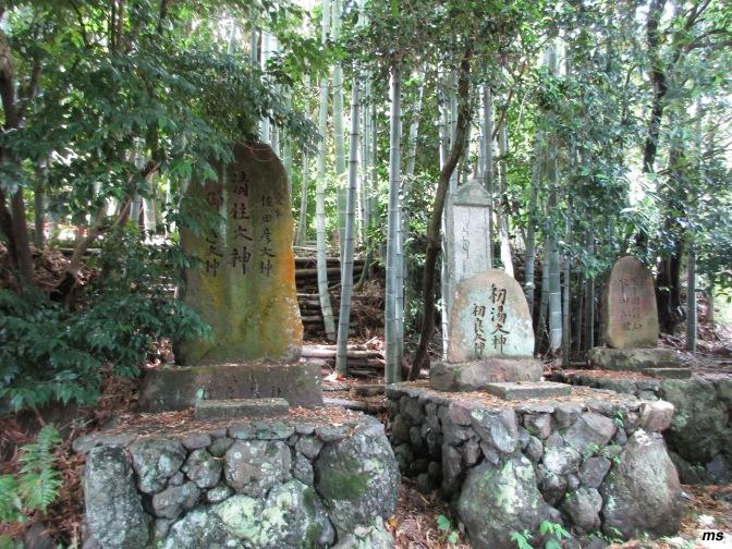 An Arashiyama hike