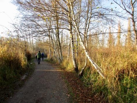 Burnaby Lake Loop Trail