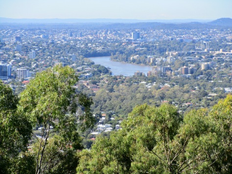Brisbane River from Mt Cootha