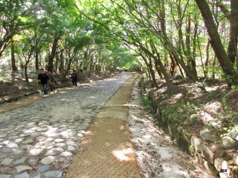 Seokguram Grotto to Bulguksa trail