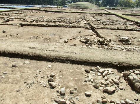 Wolseong Palace site, Gyeongju