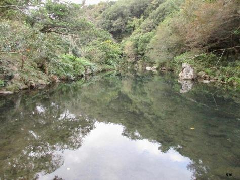By Cheongjiyeon Falls Trail, Seogwipo