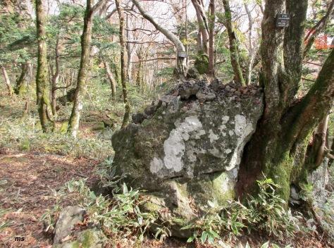 Eoseungsaengak Trail, Hallasan National Park