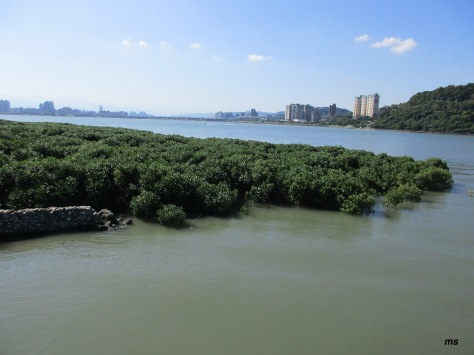 Keelung and Tamsui Rivers, Guandu Nature Reserve