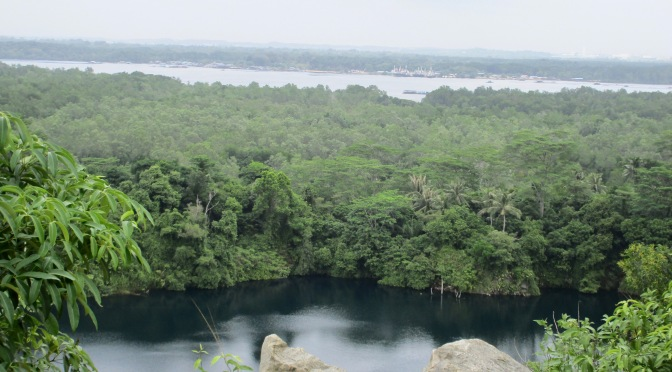 pulau ubin island's highest point